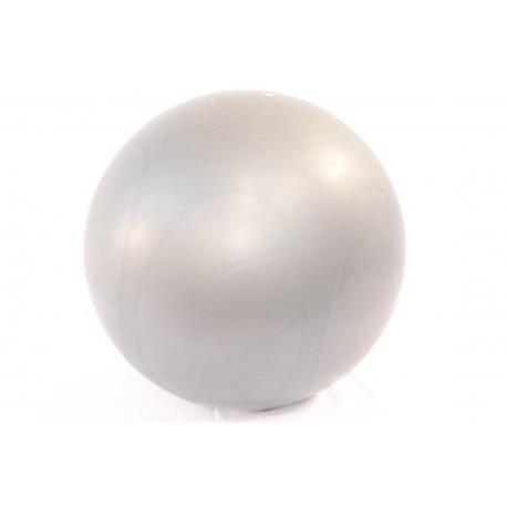 Fitball o pelota de fitness premium