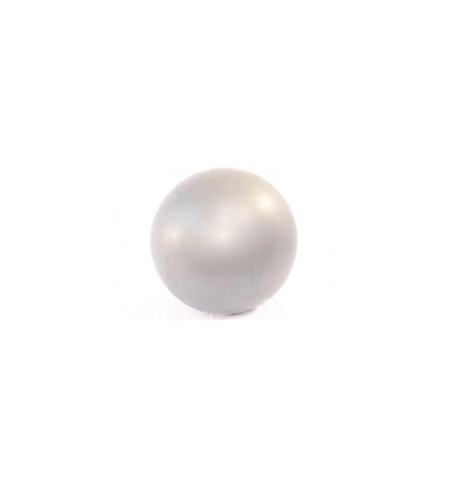 Fitball o pelota de fitness premium b537e75317d6